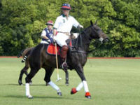 Polo Experience picture