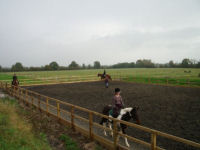 Horse riding experience picture